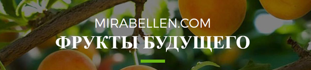 ru.mirabellen.com